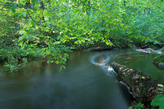 река Стоковое Фото
