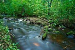 река Стоковое фото RF