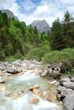 река Стоковая Фотография