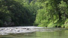 Река видеоматериал