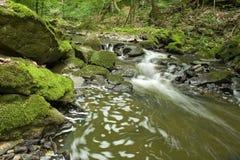 река 6 Стоковые Изображения RF