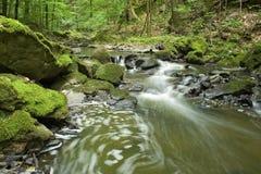 река 7 Стоковая Фотография RF