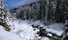 река 8 снежное Стоковое Фото