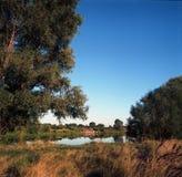 Река стоковые фотографии rf