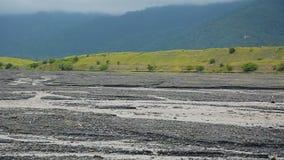 Река Alazani пропуская в Кавказе, Georgia, воде для полива и выпивать сток-видео