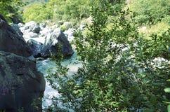 Река Alcantara и вегетация стоковые изображения