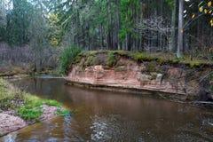 Река Amata на осени, деревьях, воде, скалах Природа и река, стоковое фото