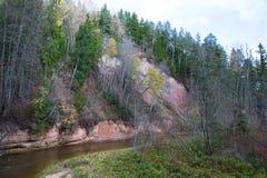 Река Amata на осени, деревьях, воде, скалах Природа и река, стоковые изображения rf