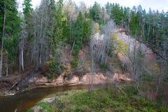Река Amata на осени, деревьях, воде, скалах Природа и река, стоковое фото rf