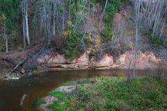 Река Amata на осени, деревьях, воде, скалах Природа и река, стоковые фото