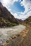 Река Animas Стоковые Изображения RF