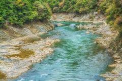 Река Arashiyama, поток под зеленым лесом стоковое изображение rf
