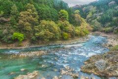 Река Arashiyama, поток под зеленым лесом стоковые фотографии rf