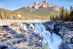 Река Athabasca, предпосылка гора Стоковое фото RF