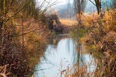 Река Atutumnal Стоковые Изображения