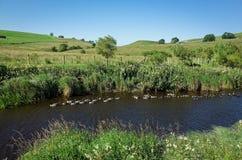 Река Bain - участки земли Йоркшира, Англия Стоковое Изображение