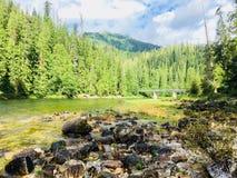 Река Banksof Clearwater, Айдахо Стоковые Фото