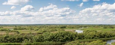 Река Berezina Стоковая Фотография RF