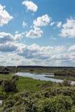 Река Berezina Стоковое фото RF