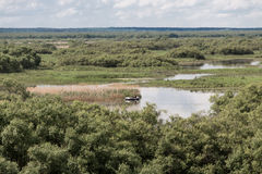 Река Berezina Стоковые Фото