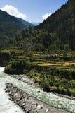 Река Bhagirathi на Gangotri, районе Uttarkashi, Uttarakhand, Стоковая Фотография RF