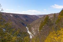 Река Blackwater бежит в каньоне в Западной Вирджинии, США стоковое изображение rf