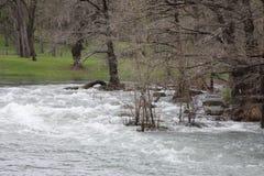 Река Blanco Стоковое Изображение RF