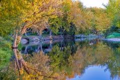 Река Boise осенью с отражениями Стоковое Изображение
