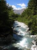река caples стоковые изображения rf
