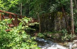 Река Catawba Footbridge пересекая вдоль следа стоковые изображения