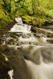 Река Ceunant Tyn y Ddol стоковые фотографии rf