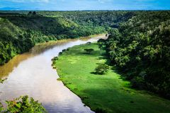 река chavon тропическое Стоковое фото RF