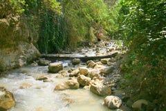 Река Chillar, Nerja, Малага Стоковое Фото