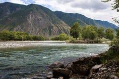 Река Chulyshman Стоковые Фотографии RF