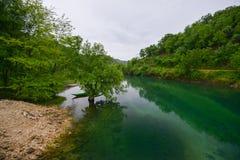 Река Crnojevic около побережья озера Skadar Стоковые Изображения