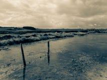 Река Cuckmere Стоковые Изображения
