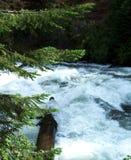 Река Dechutes стоковое фото