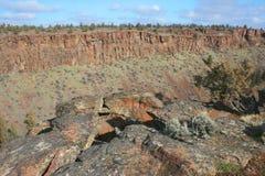 река deschutes каньона Стоковые Фотографии RF
