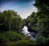 Река Dodder в Дублине Стоковая Фотография