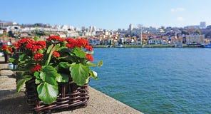 Река Douro Стоковая Фотография