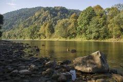 Река Dunajec Стоковое фото RF