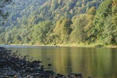 Река Dunajec Стоковые Фото
