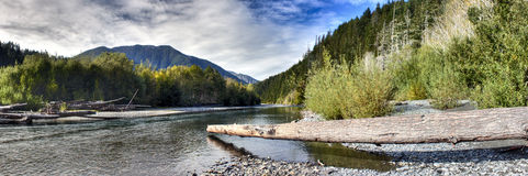 река elwha Стоковые Фото