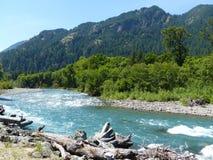 Река Elwha, WA Стоковая Фотография