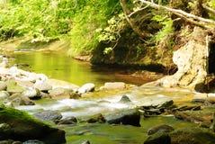 Река Gelt Стоковые Фото