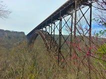 река gorge моста новое Стоковое фото RF