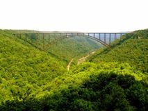 река gorge моста новое Стоковые Фотографии RF
