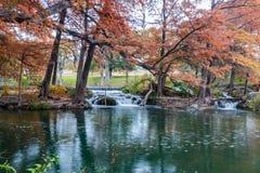 Река Guadalupe в Ingram Техасе Стоковое Фото