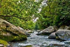 река hdr Стоковая Фотография
