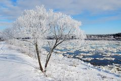 река hoarfrost Стоковые Фотографии RF